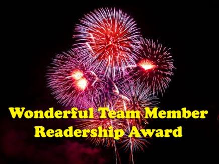 Blog Premio Wonderfull Team Member Readership Award