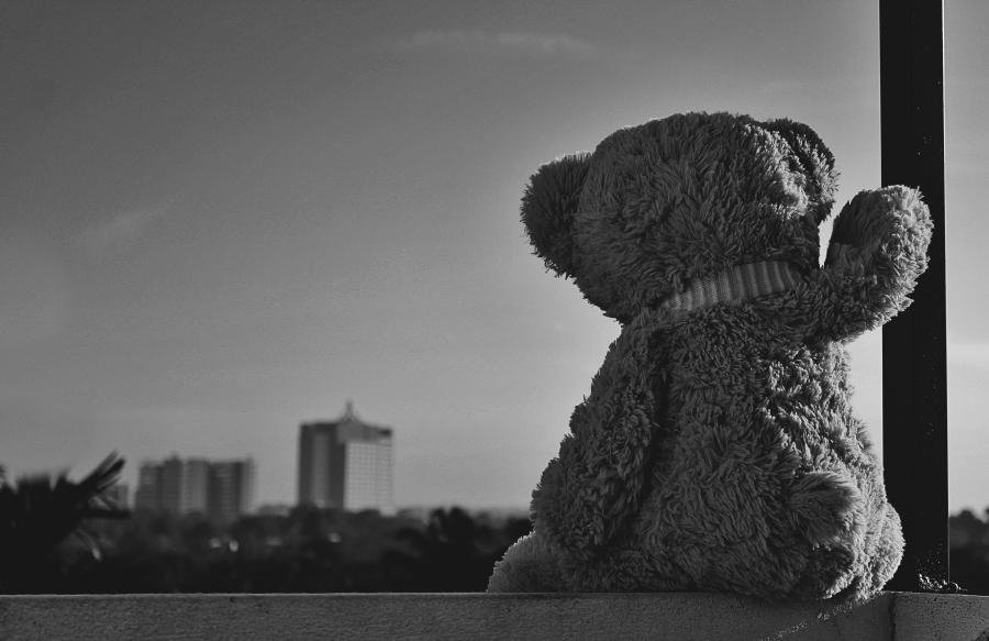 Alone. Foto: Manasa perera.Todos los derechos reservados.