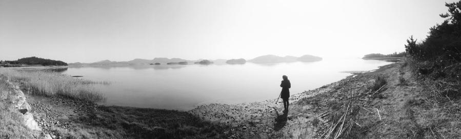 Landscape. Foto: YONGSAM JO . CC0 Public Domain.