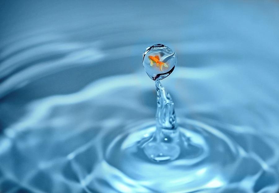 Drop of water. Foto: Anja. CC0 Public Domain.