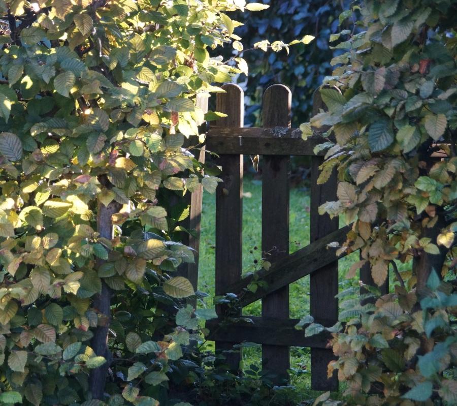 Garden gate. Foto: Tom. CC0 Public Domain.