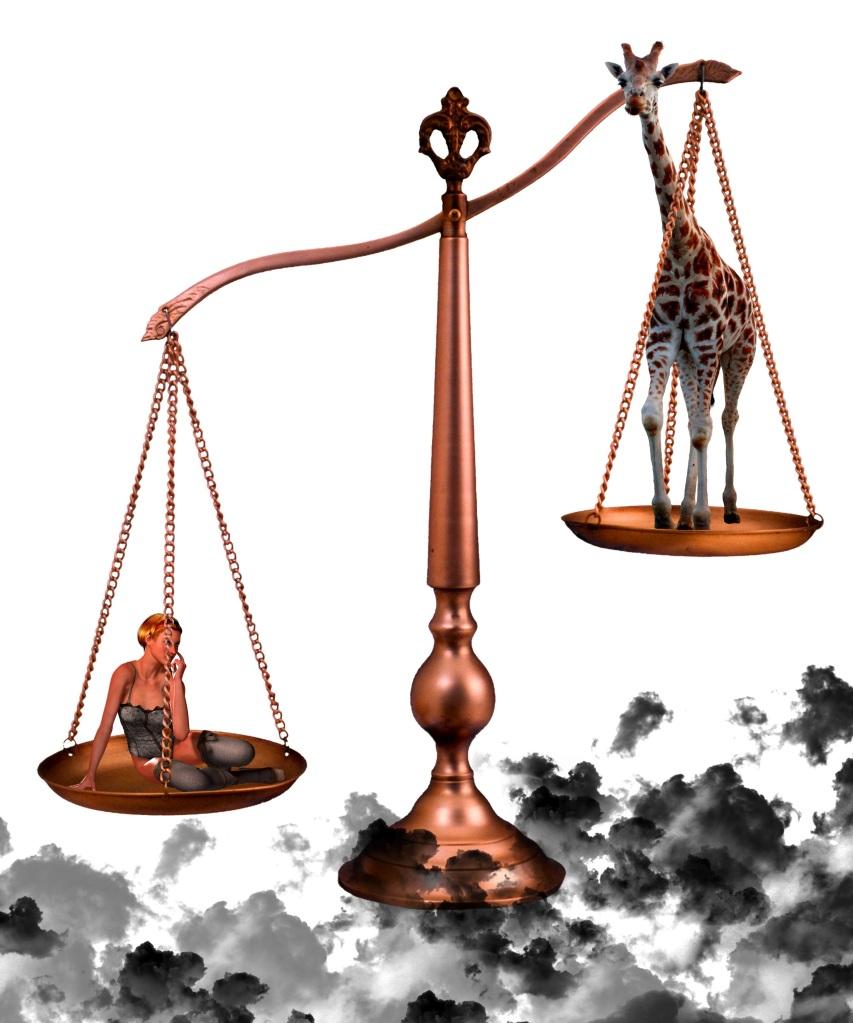 Scale. Foto: Solomon Barroa. CC0 Public Domain.
