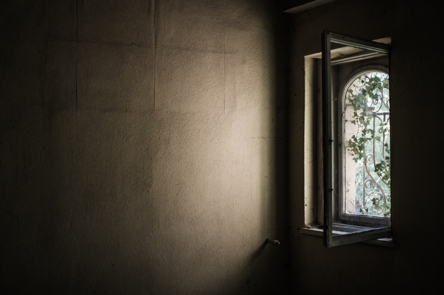 Window. Foto: Bertsz. CC0 Public Domain.
