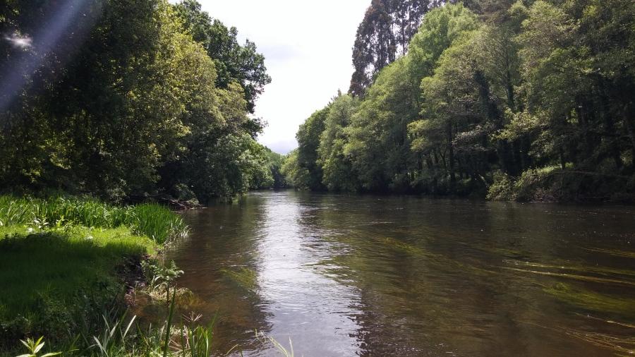 Río Miño. (Lugo) Foto: Antinomia.